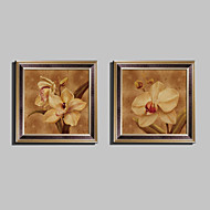E-HOME® Framed Canvas Art, Narcissus Framed Canvas Print Set Of 2