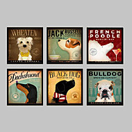 baratos Quadros com Moldura-Animal Quadros Emoldurados / Conjunto Emoldurado Wall Art,PVC Preto Sem Cartolina de Passepartout com frame Wall Art