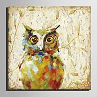 billiga Djurporträttmålningar-Hang målad oljemålning HANDMÅLAD - Djur Europeisk Stil Moderna Duk