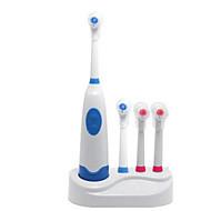 abordables -Brosses à dents Adulte ABS