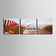 MINI SIZE E-HOME Beach Grass Scenery Clock in Canvas 3pcs