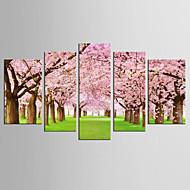 halpa -Canvas Set Kuuluisa Kukkakuvio/Kasvitiede Moderni Realismi,5 paneeli Kanvas Mikä tahansa muoto Tulosta Art Wall Decor For Kodinsisustus