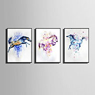 E-HOME® Framed Canvas Art Colorful Jumping Horse Theme Series Framed Canvas Print One Pcs