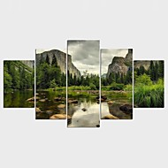 Landscape Floral/Botanical Modern Pastoral,Five Panels Canvas Any Shape Print Wall Decor For Home Decoration