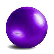 55cm Bola de Fitness Ioga Ginásio
