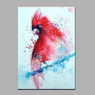 Handgeschilderde Dieren Verticaal,Modern Eén paneel Canvas Hang-geschilderd olieverfschilderij For Huisdecoratie