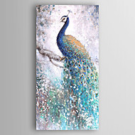 מצויר ביד בעלי חיים מאונך,מודרני פנל אחד בד ציור שמן צבוע-Hang For קישוט הבית