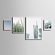Landskap Blomstret/Botanisk Ord & Sitater Innrammet Lerret Innrammet Sett Veggkunst,PVC Materiale Hvit Ingen Passpartou med ramme For