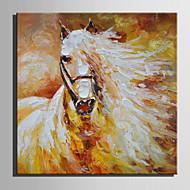 billiga Djurporträttmålningar-Hang målad oljemålning HANDMÅLAD - Djur Retro Duk