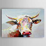 billiga Djurporträttmålningar-Hang målad oljemålning HANDMÅLAD - Djur Nutida Artistisk Stil Duk