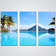 preiswerte Aufgespannte Leinwandrucke-Aufgespannte Leinwandrucke Drei Paneele Segeltuch Horizontal Druck Wand Dekoration Haus Dekoration