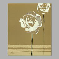 IARTS® Hand Painted Modern Abstract Beige Background & White Rose on Canvas Stretched Frame Handmade Oil Painting For Home Decoration Ready To Hang