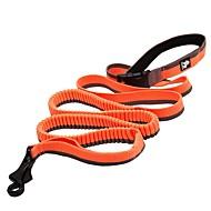 Koira Talutushihnat Liukkauden esto Heijastava Hengittävä Turvallisuus Yhtenäinen Verkko Nylon Musta Oranssi Keltainen Punainen