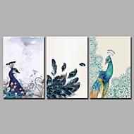 billiga Djurporträttmålningar-Hang målad oljemålning HANDMÅLAD - Djur Artistisk Rustik Klassisk & Tidlös Duk