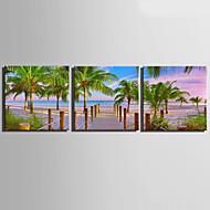 halpa Tulosteet-3 Kangas Neliö Painettu Wall Decor Kodinsisustus