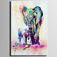 billiga Djurporträttmålningar-Hang målad oljemålning HANDMÅLAD - Djur Rustik Moderna Duk