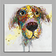 baratos -Pintados à mão Abstrato Animais Quadrada, Modern Tela de pintura Pintura a Óleo Decoração para casa 1 Painel