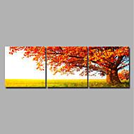 ieftine Imprimeuri-Imprimeu Imprimate în rulouri de pânză / Imprimeuri pânză întinse - Peisaj / Anotimpuri Modern