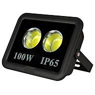 tanie Naświetlacze-1 szt. 100 W Reflektory LED Wodoodporny / Dekoracyjna Ciepła biel / Zimna biel 85-265 V Oświetlenie zwenętrzne / Dziedziniec / Ogród 2 Koraliki LED