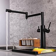кухонный смеситель - Две ручки одно отверстие Окрашенные отделки Стандартный Носик / Горшок Filler Настольная установка Современный Kitchen Taps