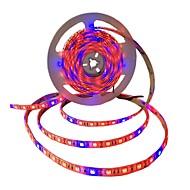 5m Faixas de Luzes LED Flexíveis / Luzes de tira crescentes 300 LEDs SMD5050 4 vermelho + 1 azul / 5Red + 1Blue / 3Red + 1Blue Impermeável / Auto-Adesivo 12 V 1pç