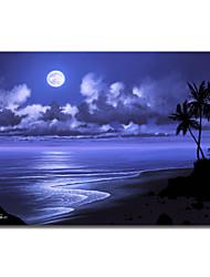 Trykt Canvas Art Moonlight Dream af Jon Rattenbury med Strethed Frame