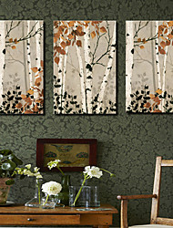 Canvas Art Botânico Maple Tree Set of 3
