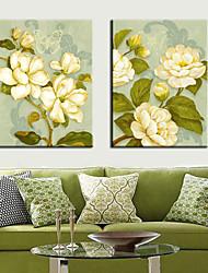 Недорогие -Натянутым холстом Искусство Цветочные Green Life Набор из 3