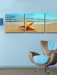 cheap -Stretched Canvas Print Art Landscape Sandbeach Set of 3