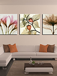 Stretched Canvas Print Floral Petal and Leaf Set of 3