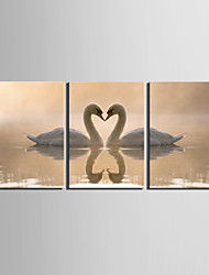 cheap -Stretched Canvas Print Canvas Set Animals Modern,Three Panels Canvas Horizontal Print Wall Decor For Home Decoration