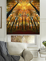 cheap -The Autumn Woods Roller Shade