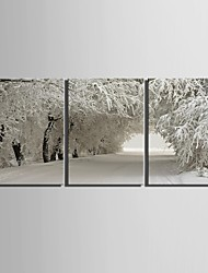 cheap -E-HOME® Stretched Canvas Art Snow Scene Decoration Painting Set of 3