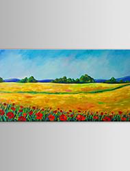 iarts pittura a olio di paesaggio moderno campo di primavera a mano tela dipinta con telaio allungato