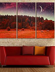 e-Home® strakt ledet lærred udskrive kunst skov og himmel førte blinkende optisk fiber print sæt af 3