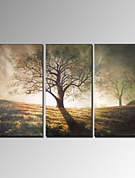 cheap -VISUAL STAR®Hand-Painted Tree Canvas Oil Painting Modern Painting Art Ready to Hang