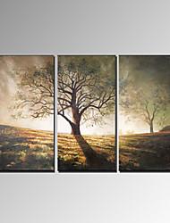 Недорогие -Ручная роспись Пейзаж Modern 3 панели Hang-роспись маслом For Украшение дома