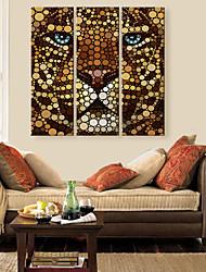 Недорогие -натянутым холстом искусство цвет льва лицом Декоративная роспись Набор из 3