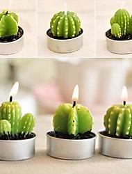 6 X Cactus Plant Pot Set Candles Candle Party  Wedding Decorations (Random Color)