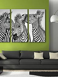 Недорогие -Животные 3 панели Вертикальная С картинкой Декор стены Украшение дома