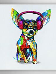 ručně malované olejomalba zvíře pes s headsetem s nataženém rámem 7 stěny arts®