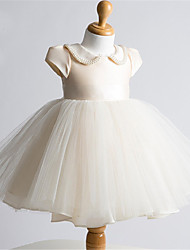 cheap -Ball Gown Short / Mini Flower Girl Dress - Tulle Short Sleeves Jewel Neck with Pearl Detailing by LAN TING BRIDE®