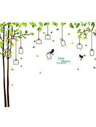 Wall Stickers Wall Decals Style Memory Tree Photos PVC Wall Stickers