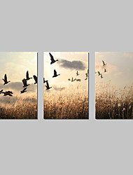cheap -Canvas Set Landscape Classic Traditional,Three Panels Horizontal Print Wall Decor For Home Decoration