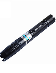 cheap -Flashlight Shaped Laser Pointer 450nm Aluminum Alloy