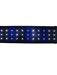cheap -Aquarium Aquarium Decoration LED Lighting White Blue Energy Saving LED Lamp 220V