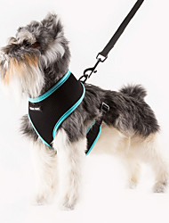 cheap -Cat / Dog Harness Adjustable/Retractable / Breathable Solid Green / Blue / Orange / Rose Nylon / Mesh