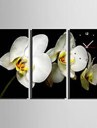 Modern/Zeitgenössisch Blumen/Botanik Wanduhr,Rechteckig Leinwand 30 x 60cm(12inchx24inch)x3pcs/ 40 x 80cm(16inchx32inch)x3pcs Drinnen Uhr