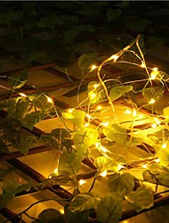 20-LED 2M Waterproof  Plug Outdoor Christmas Holiday Decoration Light LED String Light