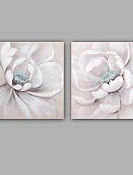 abordables -Pintada a mano Abstracto / Floral/Botánico Pinturas de óleo,Modern / Clásico Dos Paneles Lienzos Pintura al óleo pintada a colgar For